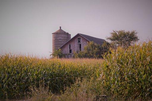 Outdoors, Heaven, Grass, Barn, Farm, Home, Wood