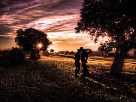 Tree, Sunset, Landscape, Dawn, Dusk, Romance, Love