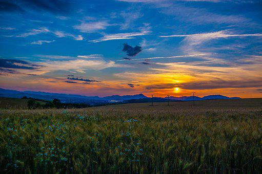 West, Sun, Evening, Landscape, Twilight, Orange, Field