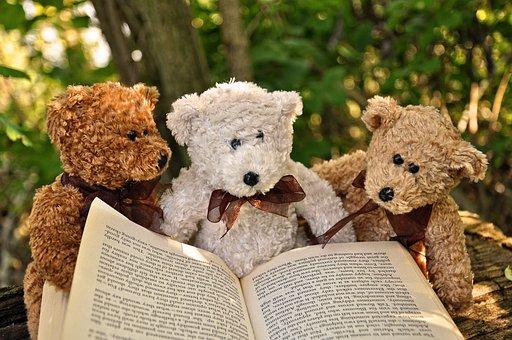 Bear, Teddybear, Toy, Cuddly Toy, Teddy, Stuffed