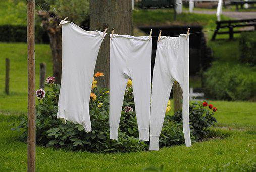 Grass, Summer, Outdoors, Nature, Clothesline, Laundry