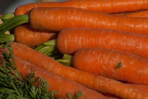 Carrots, Food, Vegetable, Harvest