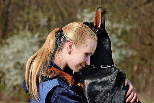Doberman, Dog, Hug, Love, Friendship