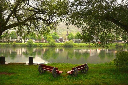 Tree, Grass, Nature, Park, Summer, Lake, Outdoors