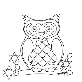 Owl, Colouring, Page, Colouring Page, Outline, Shape