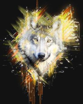 Wolf, Predator, Canidae, Canis Lupus, Hunter