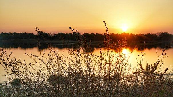 Evening, Lake, Sunset, Water, Nature, Tall, Grass