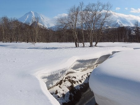 Winter, Snow, Snowdrifts, Creek, Forest, Back On Track