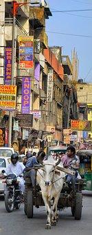 Street Life, Street, Old, Delhi, City, India, Transport