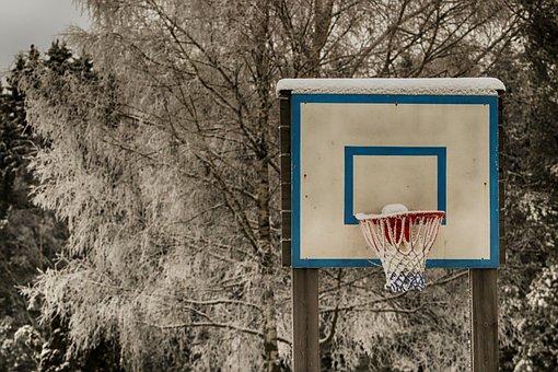Outdoors, Basketball, Tree, Wood