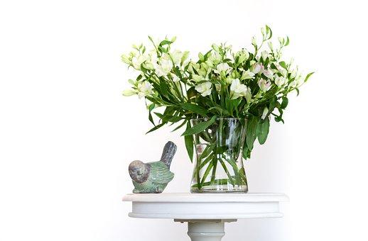 Leaf, Nature, Flora, Vase, Water, Bird, Table, White