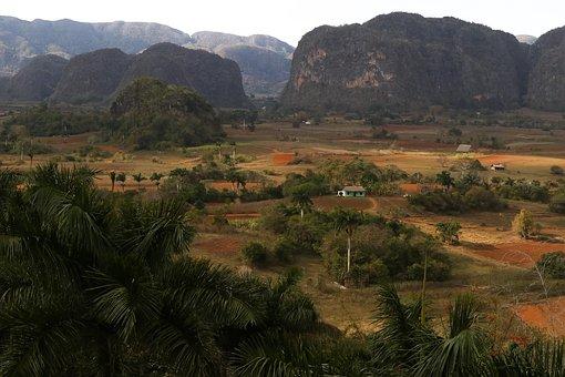 Cuba, Pinar Del Rio, Valle De Viñales, Nature