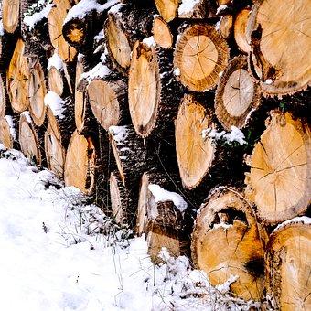 Nature, Winter, Wood, Deco, Decoration, Field, Garden
