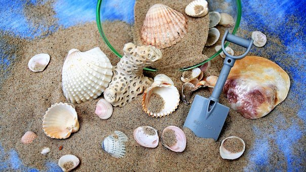 Sand, Desire, Dream, Imagination, Seashell, Blue
