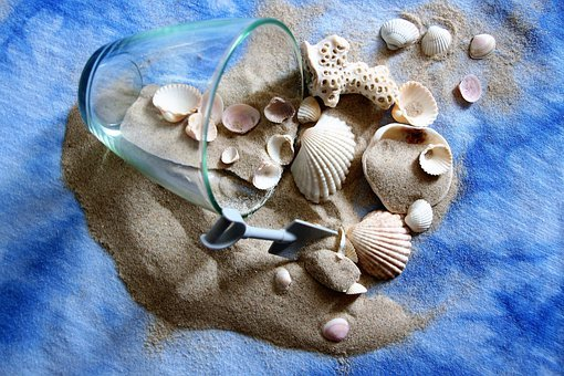 Memory, Desire, Dream, Summer, Shells, Holiday, Nature
