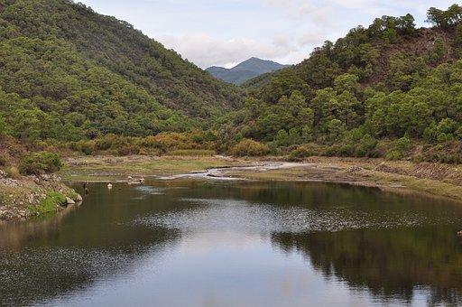 Nature, Marsh, Open Air