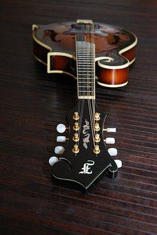 Bluegrass Mandolin, Mandolin, Instrument, Sound, Music