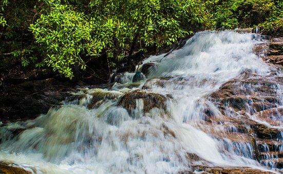 Waterfall, Water, Nature, Stream, River, Cascade, Wood