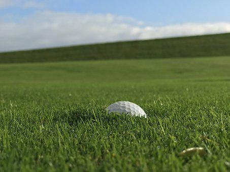 Grass, Nature, Meadow, Summer, Landscape, Golf Ball