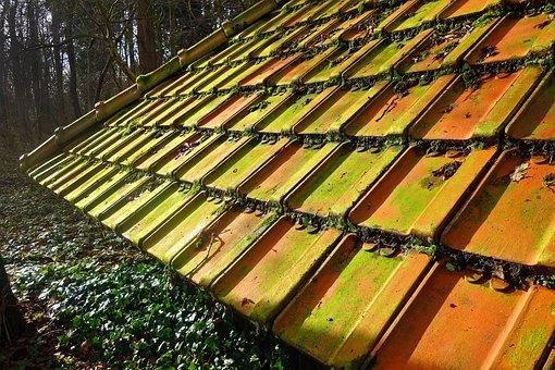 Roof, Roof Tiles, Tile, Terracotta, Slate, Clay