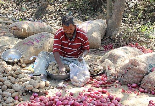 Indian Street Vendor, Bazaar, Selling, Rural Market