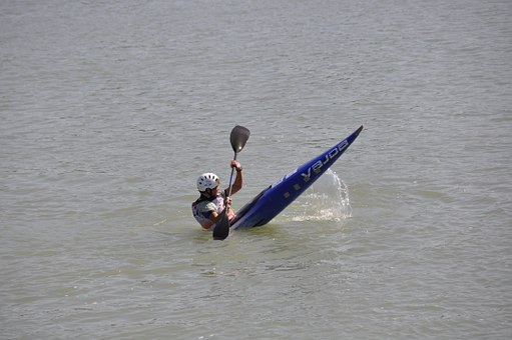Canoeing, Paddle, Paddler, Nature, Water, Danube