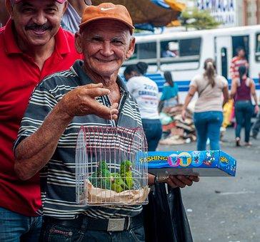 Man, Selling, Parrots, Maracaibo, Flea Market