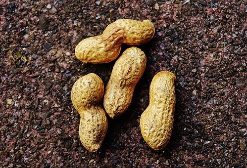 Peanuts, Shell, Food, Delicious, Nutrition, Peanut