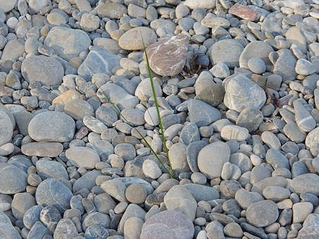 Gravel Bank, Pebble, Stones, Water, Bank, Gravel Bed