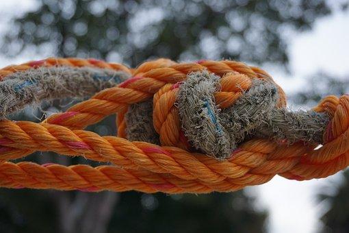 Rope, Knot, Nature, Wood, Bokeh