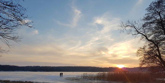 Nature, Tree, Panoramic, Winter, The Dawn Family