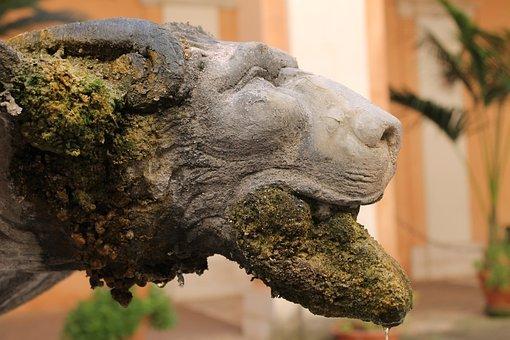 Nature, Close Up, Animal, Sculpture, Statue, Stone