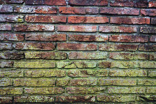 Brick Wall, Mold, Moldy Brick Wall, Red Brick Wall