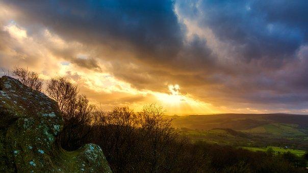 Brimham Rocks, Brimham Moor, Yorkshire, Lone Tree, Rock