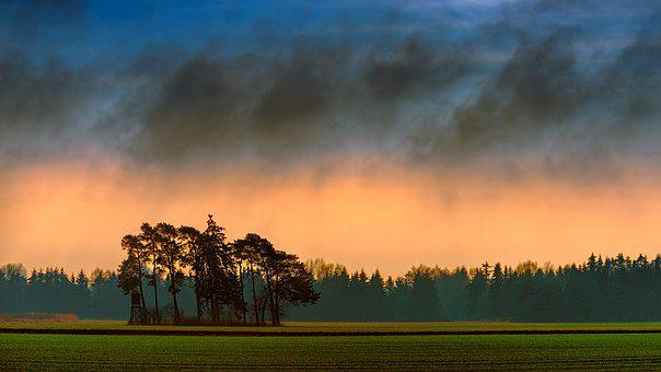 Tree, Nature, Panorama, Landscape, Sky, Forest, Fields