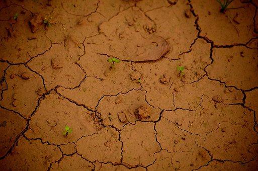 Soil, Drought, Arid, Dry, Rough, Pattern, Crack
