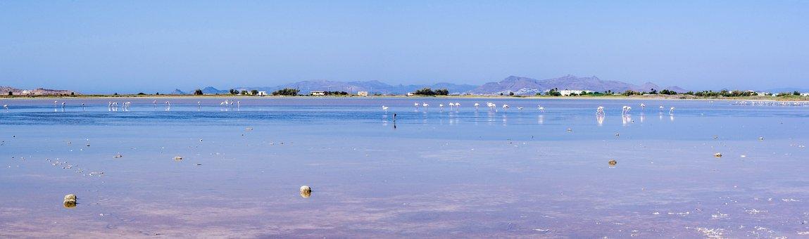 Water, Nature, Sea, Lake, Landscape, Panoramic Photo