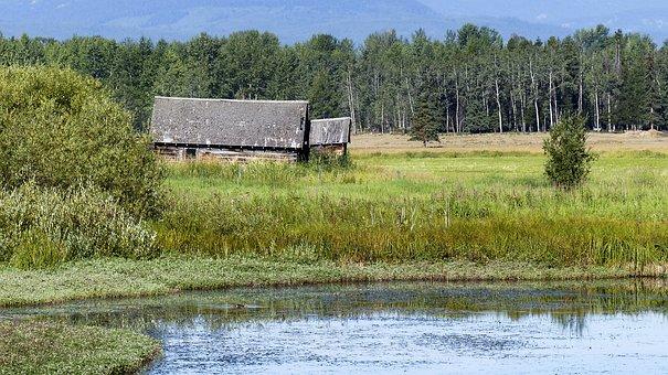 Barn, Farmland, Rural, Countryside, Agriculture