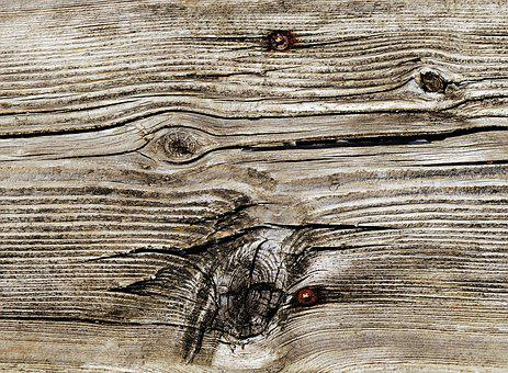 Woods, Wood, Chop Wood, Background, Texture, Hardwood