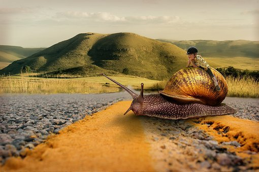 Snail, Girl, Riding, Road, Slow, Fantasy, Surreal