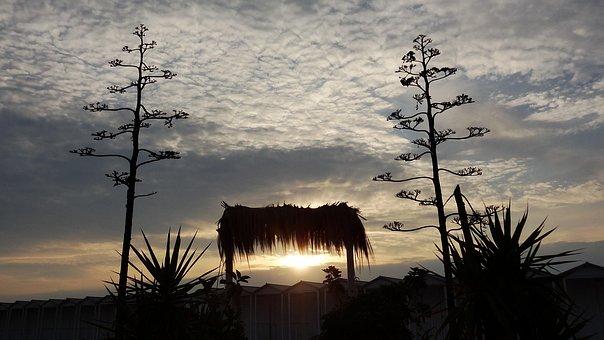 Sky, Landscape, Waters, Sunset, Nature, Evening Sun