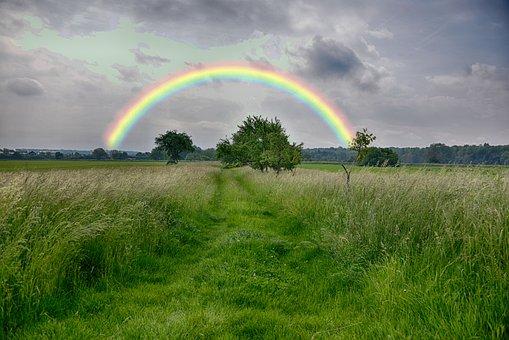 Rainbow, Grass, Nature, Landscape, Sky, Summer, Rural