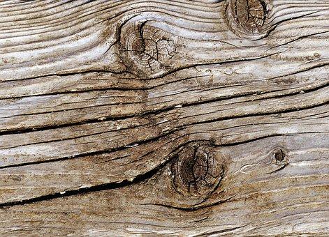 Woods, Wood, Chop Wood, Background, Texture, Hardwood