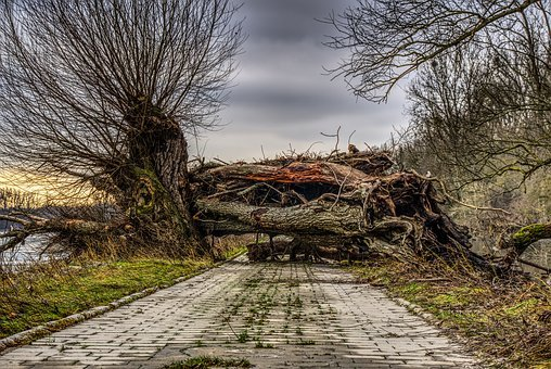 Log, Upset, Devastated, Lock, Blocking, Broken