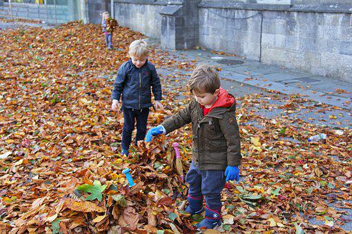 Child, Playing, Fall, Happy, Fun, Boy, Little, Nature