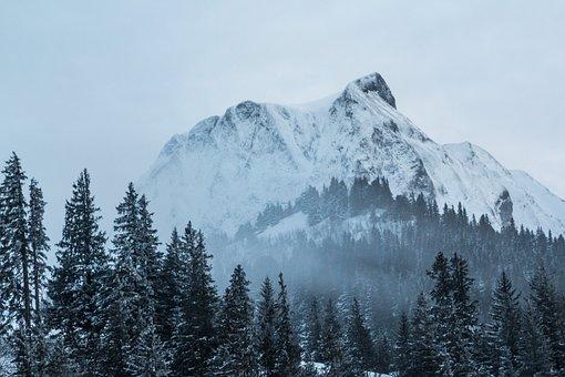 Snow, Mountain, Gantrisch, Mountain Summit, Winter
