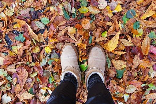 Shoe, Enjoy, Fall, Leaf, Season, Nature, Color