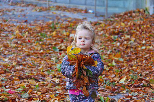 Child, Playing, Fall, Happy, Fun, Girl, Little, Nature