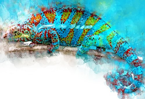 Reptile, Animal, Watercolor, Blue, Nature, Wild