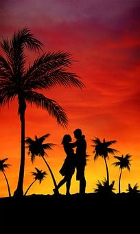 Couple, Beach, Palms, Love, Holiday, Romantic, Grooms